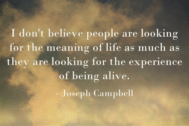 experience of being alive Campbell